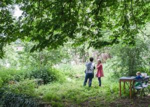 jardin-sauvage-st-vincent