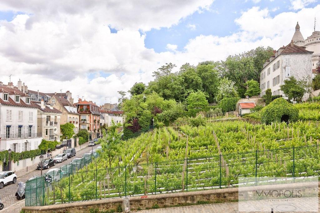 Vue imprenable sur les vignes de Montmartre 4