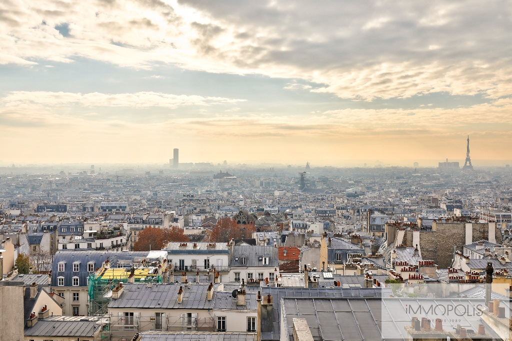 2 pieces on top floor with panoramic views of Paris and Eiffel Tower. 1
