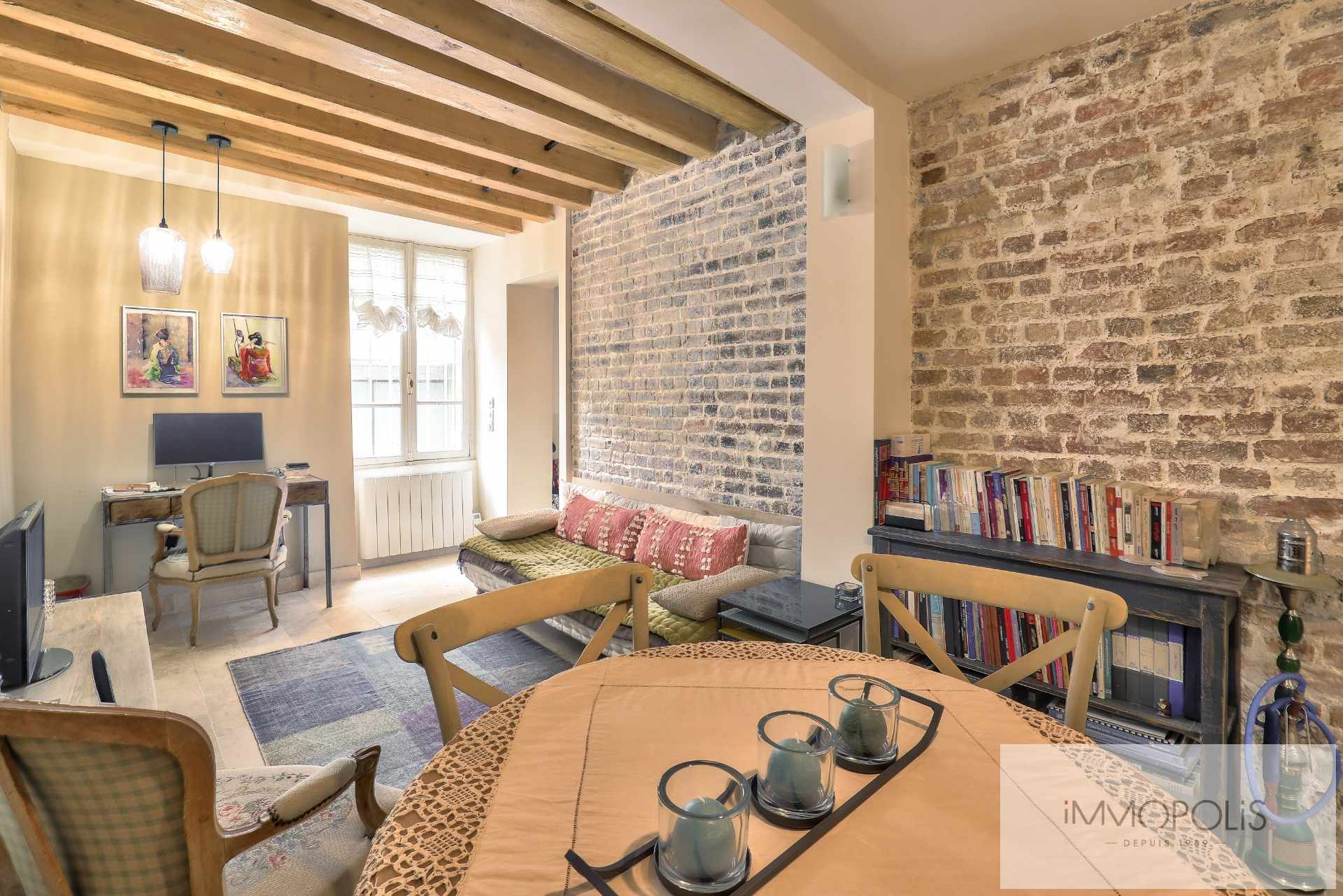 Montmartre, rue Gabrielle, beautiful 2 rooms completely renovated with stones, bricks and exposed beams: like a house! 1